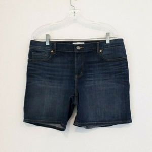 Ann Taylor LOFT denim Shorts Sz 30/10
